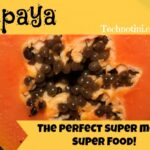 "Did you know that Papaya is a SUPER FOOD and is packed with MOM-FRIENDLY antioxidants that help your SKIN STAY LOOKING YOUNG and FIRM? Umm yeah. It's true! Read more here +bonus feature: EDUCATION EXTENSION For KIDS ""Explore the Papaya Seeds"" inside. Your kids will love this fun, super sweet + super healthy + kid-approved fruit."