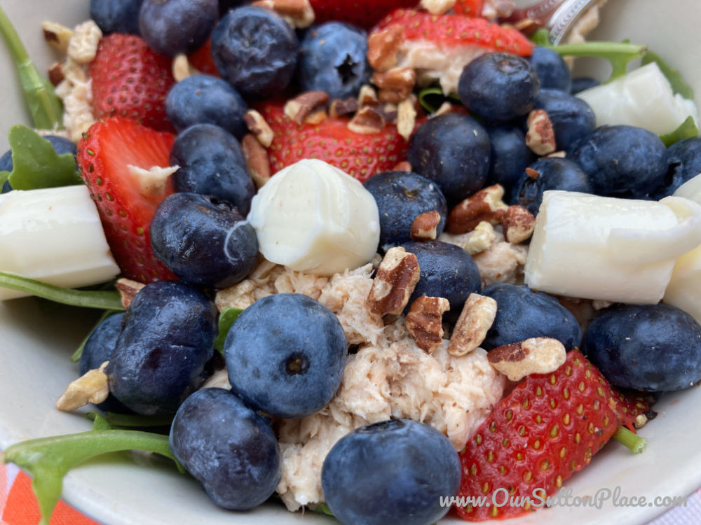 closeup of Summer Salad with blueberries, strawberries, mozarella cubes, arugula, and canned salmon