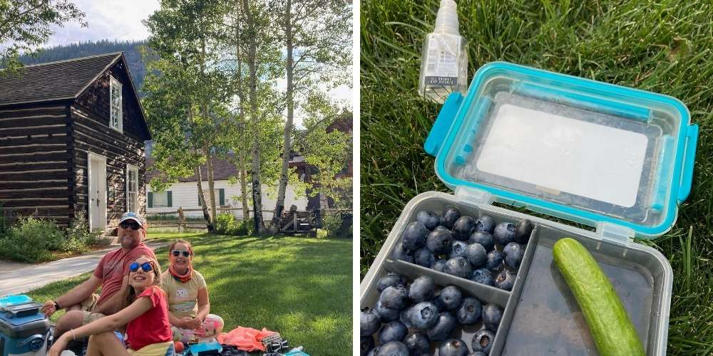 picture of a family having a picnic in a park in the mountains and a closeup picture of berries and cucumbers in a lunch container.