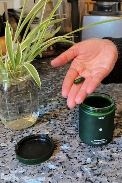 hand holding Seed Probiotic next to a spider plant